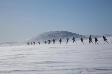 Hiihtäjät hiihtämässä jonossa Pallaksella kevätauringossa.